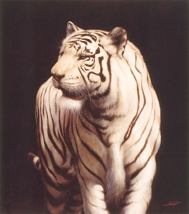 White Tiger - A painting to raise money for Endangered Wildlife